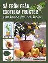 Så frön från exotiska frukter - sätt kärnor, frön och knölar