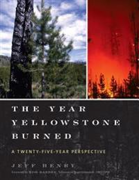 Year Yellowstone Burned