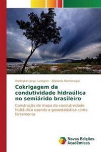 Cokrigagem Da Condutividade Hidraulica No Semiarido Brasileiro
