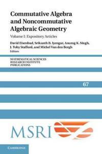 Commutative Algebra and Noncommutative Algebraic Geometry
