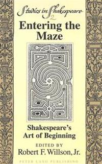 Entering the Maze