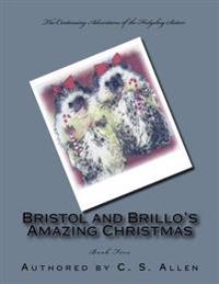 Bristol and Brillo's Amazing Christmas: The Hedgehog Sisters