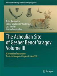 The Acheulian Site of Gesher Benot Ya'aqov
