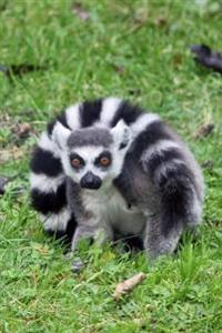 Mind Blowing Ring Tailed Lemur Journal: 150 Page Lined Journal