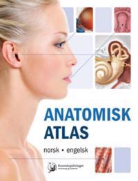 Anatomisk atlas