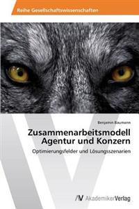 Zusammenarbeitsmodell Agentur Und Konzern