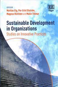 Sustainable Development in Organizations