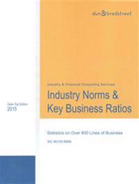Industry Norms & Key Business Ratios 2015