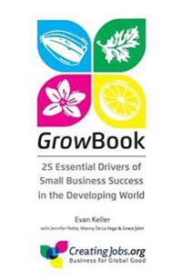 Growbook: 25 Essential Drivers of Small Business Success in the Developing World