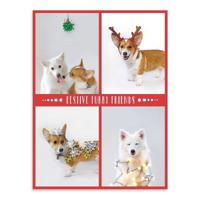 Festive Furry Friends Deluxe Holiday Notecards