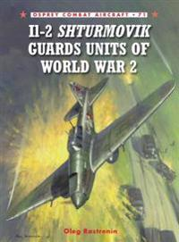 Il-2 Shturmovik Guard Units of World War 2