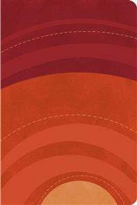 Biblia Letra Grande Tamano Manual-Rvr 1960