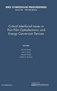 Critical Interfacial Issues in Thin-film Optoelectronic and Energy Conversion Devices