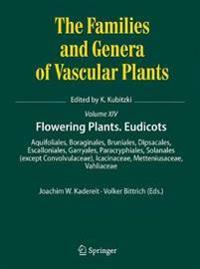 Flowering Plants. Eudicots: Aquifoliales, Boraginales, Bruniales, Dipsacales, Escalloniales, Garryales, Paracryphiales, Solanales (Except Convolvu