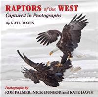 Raptors of the West: Captured in Photographs
