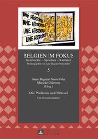 Die Wallonie Und Bruessel: Eine Bestandsaufnahme