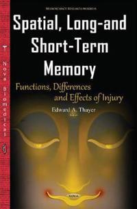 Spatial, Long-and Short-Term Memory