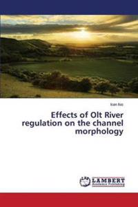 Effects of Olt River Regulation on the Channel Morphology