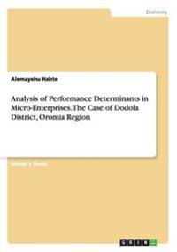 Analysis of Performance Determinants in Micro-Enterprises. The Case of Dodola District, Oromia Region