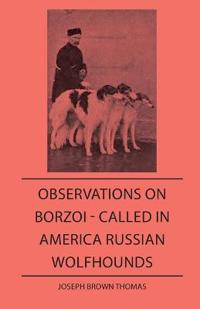 Observations on Borzo