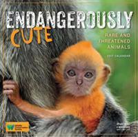 Endangerously Cute 2017 Calendar