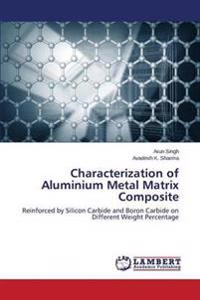 Characterization of Aluminium Metal Matrix Composite