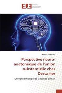 Perspective Neuro-Anatomique de L'Union Substantielle Chez Descartes