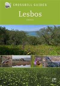 Crossbill Guides Lesbos Greece