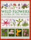 The Complete Illustrated Encyclopedia of Wild Flowers and Flora of the World: An Expert Reference and Identification Guide to Over 1730 Wild Flowers a
