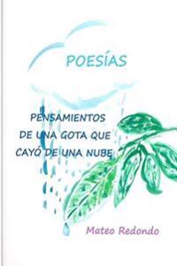 Pensamientos de Una Gota Que Cayo de Una Nube: Poesias