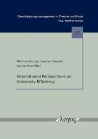 International Perspectives on University Efficiency