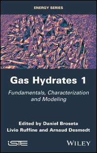 Gas Hydrates 1: Fundamentals, Characterization and Modeling