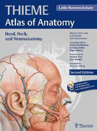 Head, Neck, and Neuroanatomy