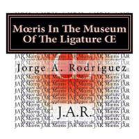 M Ris in the Museum of the Ligature: - Why There Is Not a Key for the Ligature - M Ris Asked.