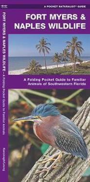Pocket Naturalist Guide Fort Myers & Naples Wildlife