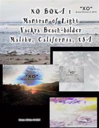 Boka 1 Mantran of Light Vackra Beach-Bilder Malibu California USA