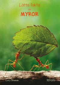 Lätta fakta om myror