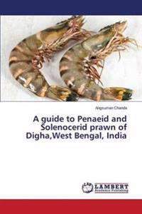 A Guide to Penaeid and Solenocerid Prawn of Digha, West Bengal, India