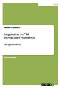 Imageanalyse Der Tsg Ludwigshafen-Friesenheim