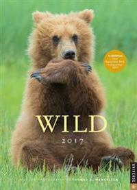 Wild 2016-2017 Engagement Calendar: Wildlife Photography by Thomas D. Mangelsen