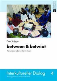 Between & Betwixt: Transurbane Lebenswelten in Bozen