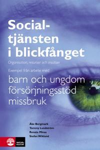 Socialtjänsten i blickfånget : organisation, resurser och insatser