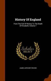 History of England from the Fall of Wolsey to the Death of Elizabeth; Volume 7