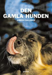Den gamla hunden : om den äldre hundens fysiska och psykiska välbefinnande