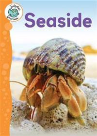 Tadpoles learners: seaside