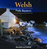 Compact wales: welsh pub names