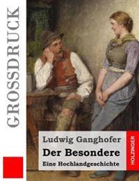 Der Besondere (Grossdruck): Eine Hochlandgeschichte