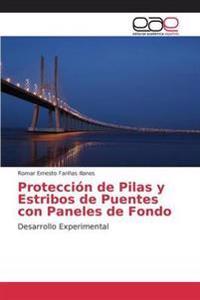 Proteccion de Pilas y Estribos de Puentes Con Paneles de Fondo
