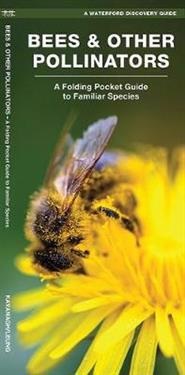 A Waterford's Discovery Guide Bees & Other Pollinators