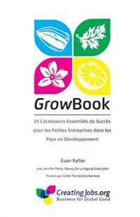 Growbook: 25 Catalyseurs Essentiels Du Succes Pour Les Petites Entreprises Dans Les Pays En Developpement